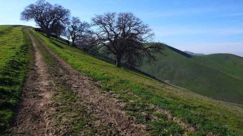 ridge-trail-3.jpg