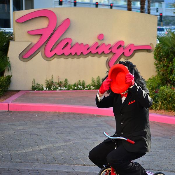 VegasFeb0013.jpg
