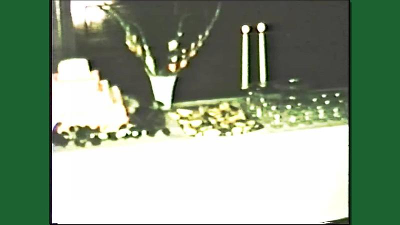 Snyder Family Videos