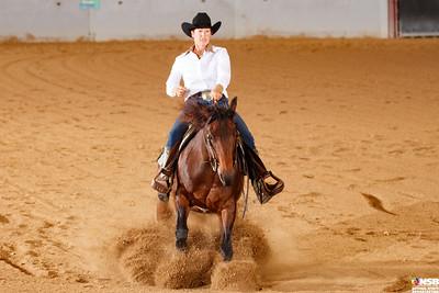 Wednesday Novice Horse Set 15 112-119