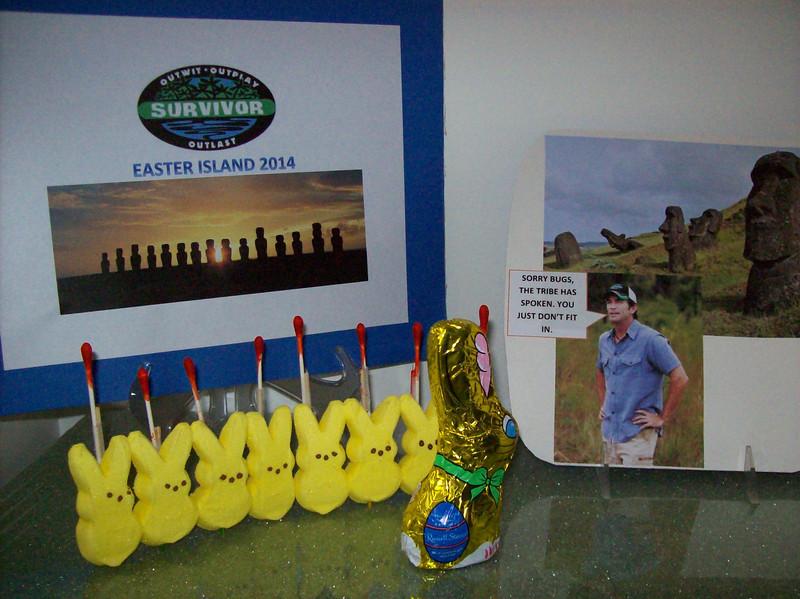 ". \""Survivor: Easter Island 2014\"" (Judy Boyer, age 59)"