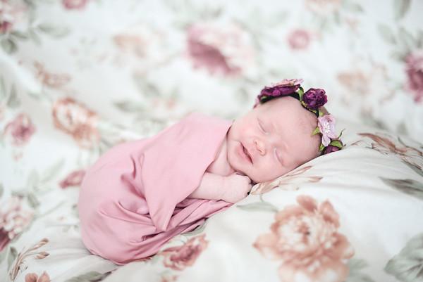 Anna N Newborn