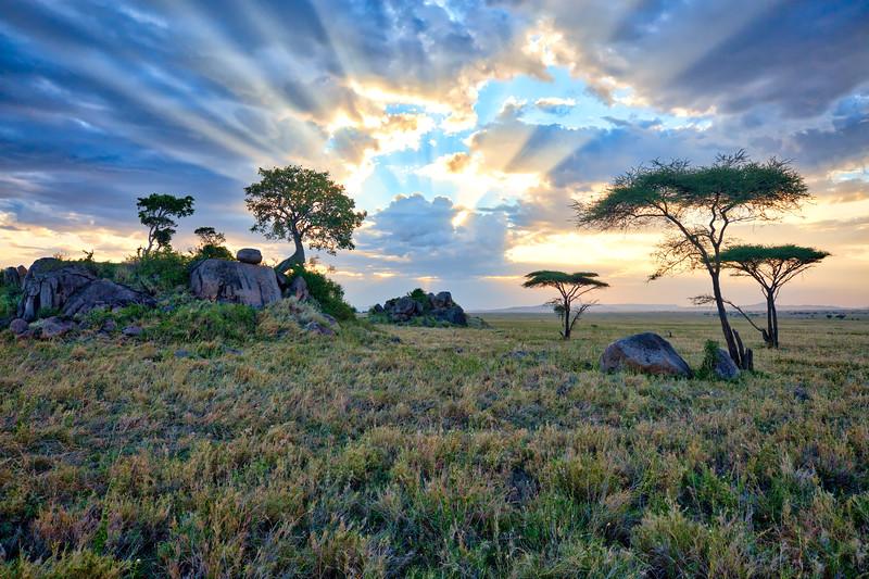 Gol Kopjes Serengeti National Park - Tanzania.jpg