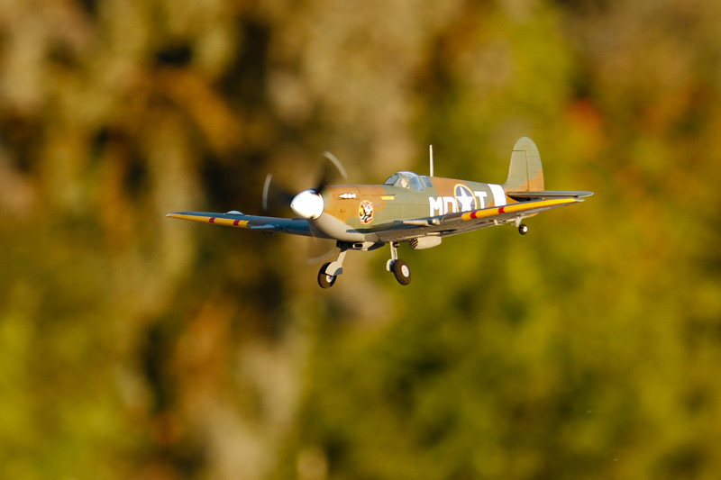 PZ_Spitfire_35.jpg
