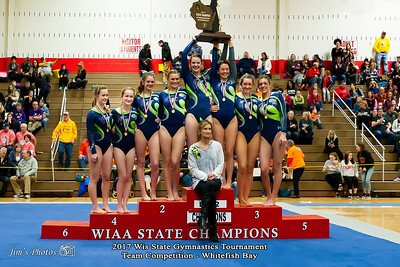 HS Sports - WI State Gymnastics Tournament [d] March 03, 2017
