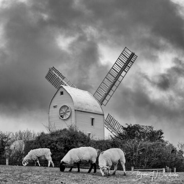 U3A_Windmills-9739-Edit.jpg