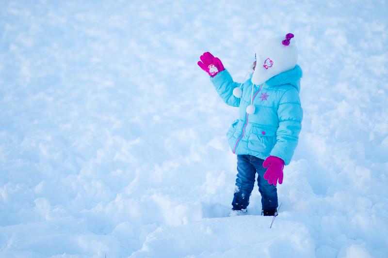 20160124-Snow_20160124_109-44.jpg