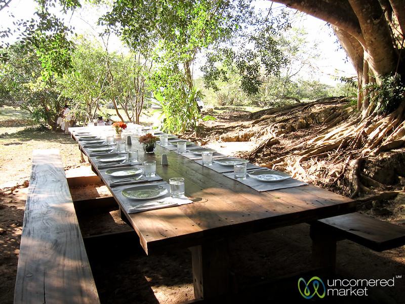 Ready for Lunch at Xochempich Cenote - Yucatan, Mexico