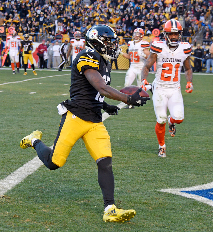 . Pittsburgh Steelers wide receiver DeMarcus Ayers (15) scores a touchdown during the second half of an NFL football game against the Cleveland Browns in Pittsburgh, Sunday, Jan. 1, 2017. (AP Photo/Don Wright)