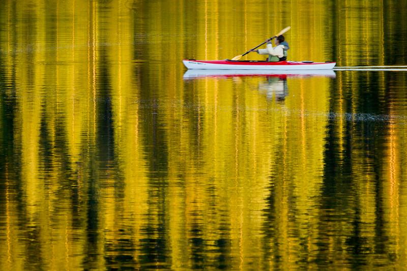 'Paddling in Liquid Gold' - Colorado, USA