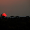 Sunset over the Serengeti, Tanzania