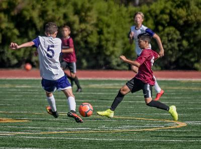 Forshay Soccer