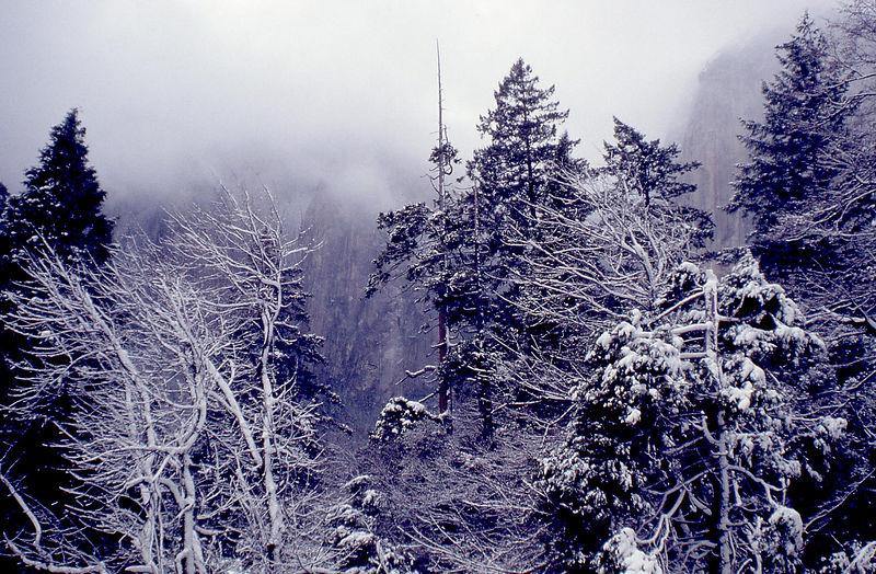Yosemite9 Schildgen.jpg