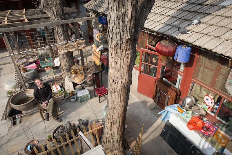 Mr. Liu relaxing in his Courtyard Home.