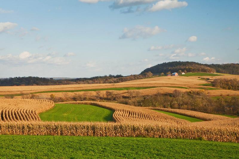 Iowa farm scene