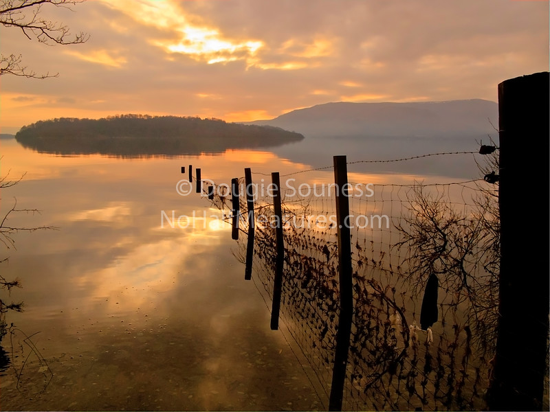 'Inchlonaig Island'<br /> 15 January 2012<br /> Cashel, Loch Lomond, Scotland