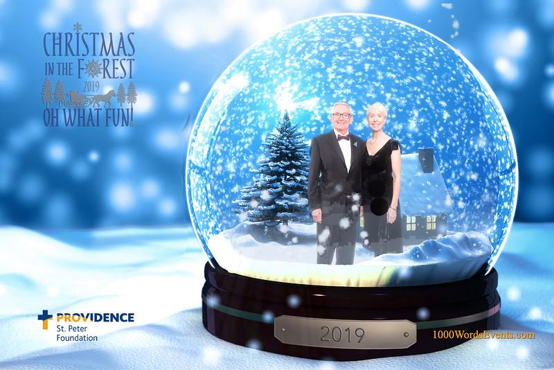 Providence Christmas Forest-020.jpg