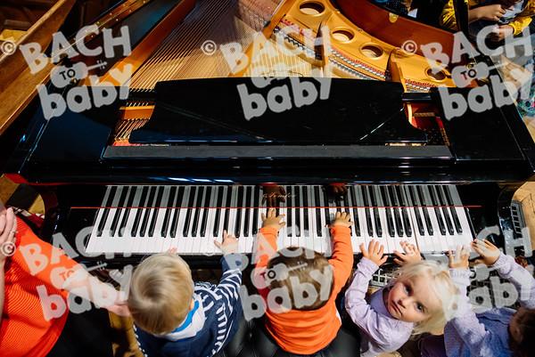 © Bach to Baby 2017_Alejandro Tamagno_Chingford_2017-09-08 042.jpg