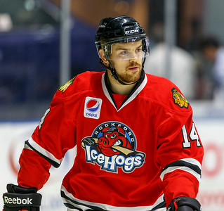 IceHogs vs Checkers 01-13-15