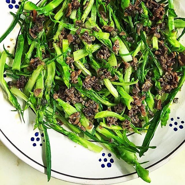 one-of-my-favourite-discoveries-has-been-the-savory-winter-puntarelle-salad---chicory-with-anchovies-its-deliciously-bitter_16129737929_o.jpg