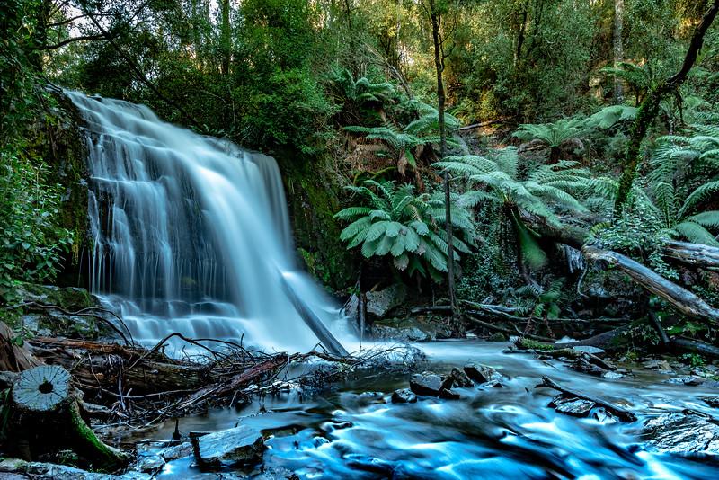 Tasmania-JUL2019-Lilydale-Falls-Lower-2.jpg