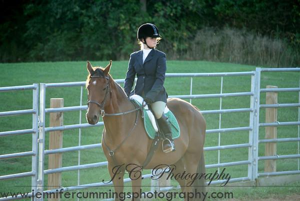 English Green Horse Equitation