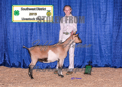 2019 Southwest District Livestock Show