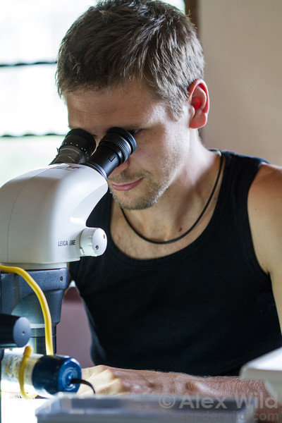 Georg Fischer (California Academy of Sciences) at the microscope.