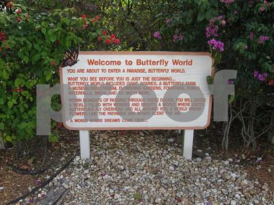 Butterfly World visit, Jan. 28, 2009