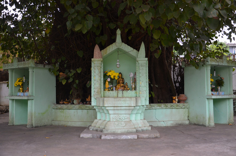 DSC_4802-buddha-tree-shrine.JPG