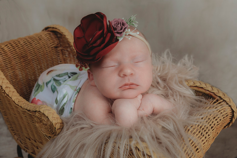 Isabella Moody Newborn 2020