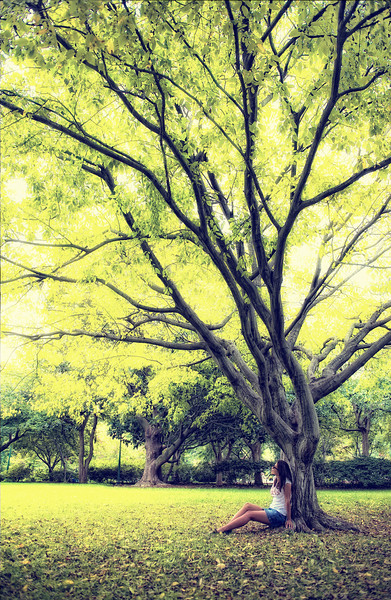 Autumn, Tu under a tree.