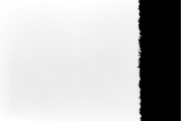 2021-04-20 Ilford Ortho 80