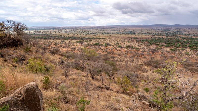 Tanzania-Tarangire-National-Park-Lemala-Mpingo-Ridge-32.jpg