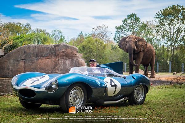 Range of the Jaguar Tour