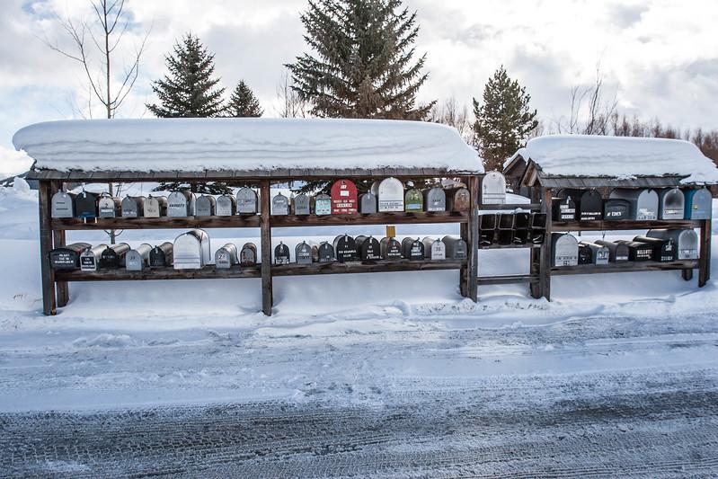 Jackson Hole, WY road trip. Lifestyle shots near Ashely's house.
