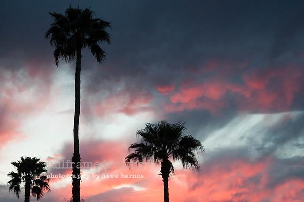 Southwest Sunsets