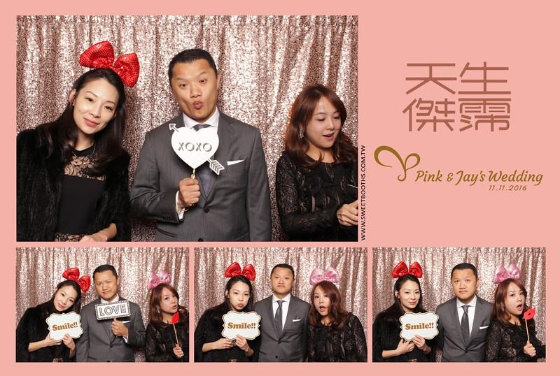 Pink.Jay (112).jpg