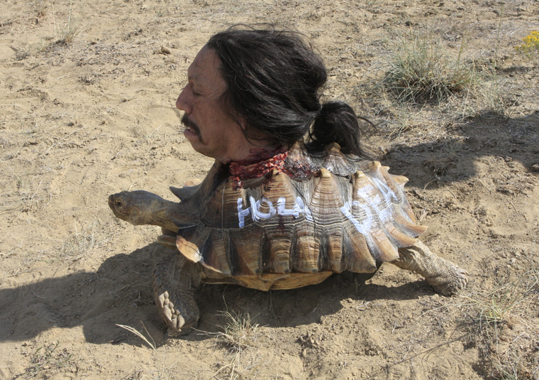 . <p>10. DRUG ENFORCEMENT AGENCY <p>Working with the DEA is a good way to get a head � on a tortoise.