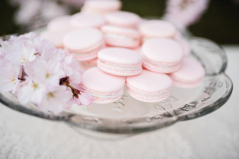 Cherry Blossoms (22 of 182).jpg