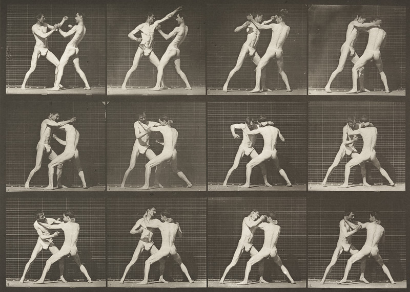 Two men in pelvis clothes boxing (Animal Locomotion, 1887, plate 340)