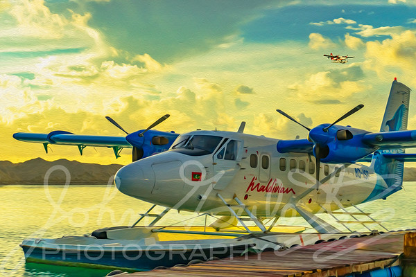 Painted Ladies Series - DHC-300 Twin Otter Seaplanes