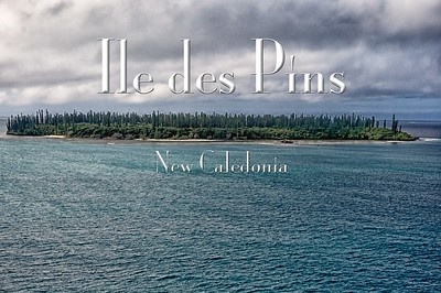 2014-02-08 - Iledes Pins