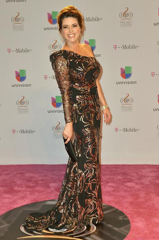""". Alicia Machado arrives at the 25th Anniversary Of Univision\'s \""""Premio Lo Nuestro A La Musica Latina\"""" on February 21, 2013 in Miami, Florida.  (Photo by Gustavo Caballero/Getty Images for Univision)"""
