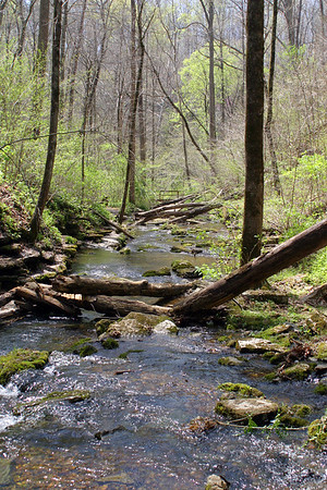 Bobo Creek