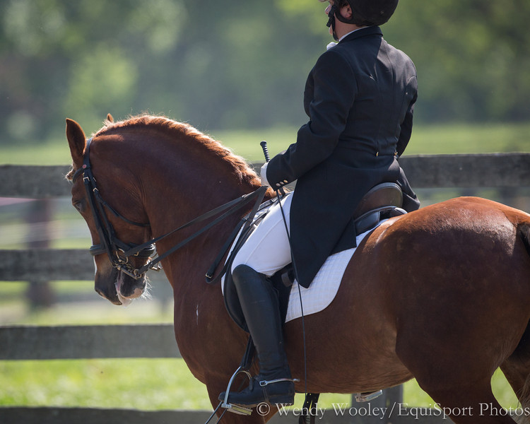 Kelly Gage on her sweet pony at Touchstone Farm on 5.2.2012