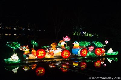 2016 Chinese Lantern Festival