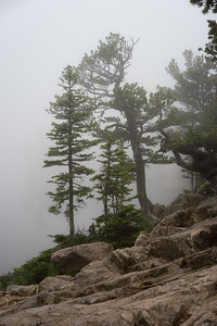 2015 Rocky Mountain National Park