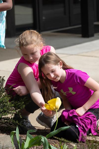 20180421 111 Girl Scouts Outdoor Art and Explorer.jpg