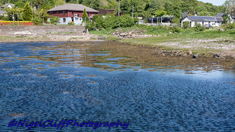 Jacobite And Corpach  31.05.2016